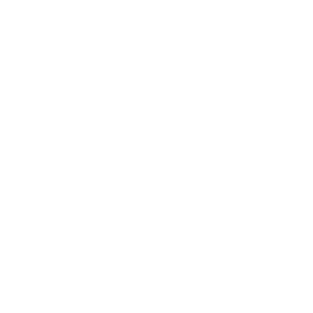 Cardiff City FC - Cardiff Originals - Hooded tops>