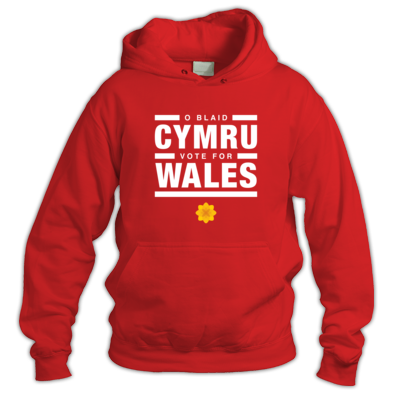 Vote for Wales Poppy