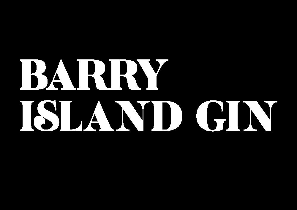 Barry Island Gin Hoodie>
