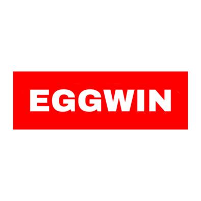 EGGWIN Box Logo Hat