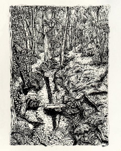 Padmall Woods