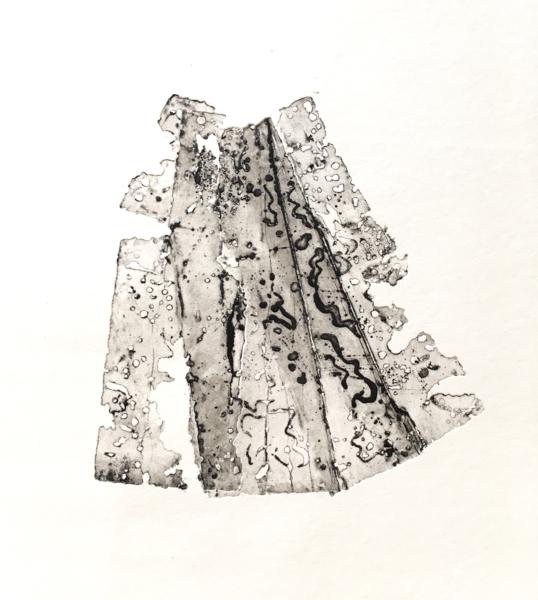 Erosion/folds 1 (2020)