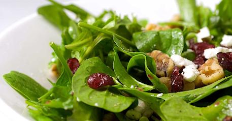 SALLAD (sallad,gurka, oliver, ruccola, paprika,ost, bröd ingår i alla)