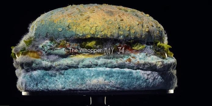 Whopper schimmelburger