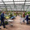 Met corona op vakantie tuincentrum blog patrick wessels