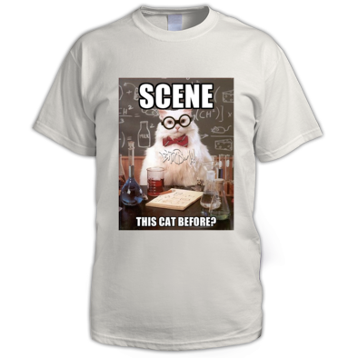 Scene This Cat Before? BRISM meme shirt