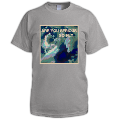 Are You Serious So Fly T-Shirt