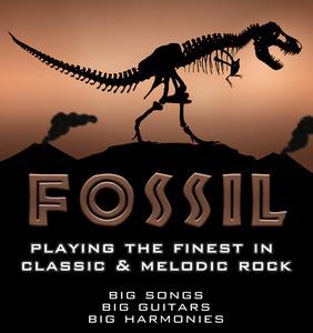 Fossil Merchandise
