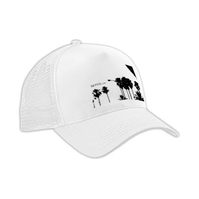 CAP MODEL.2