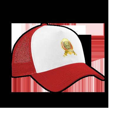'Illuminated Lion' Hat