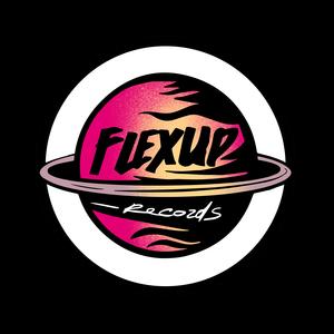 Flex Up Records Shop