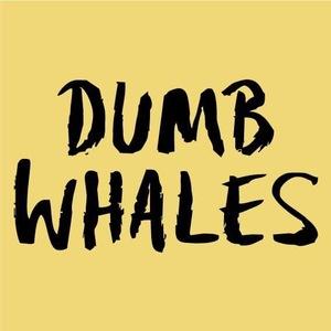 Dumb Whales