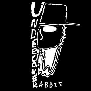 Undercover Rabbis