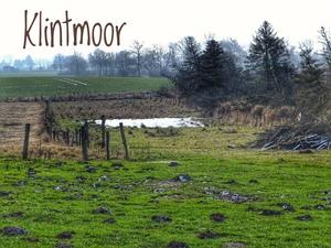 Klintmoor