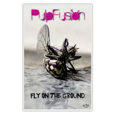PulpFusion - Fly On The Ground - Poster