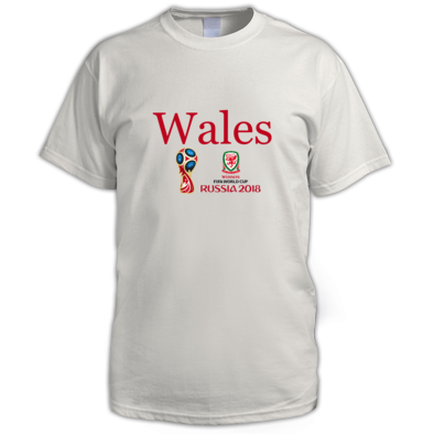 WALES WORLD CUP 1