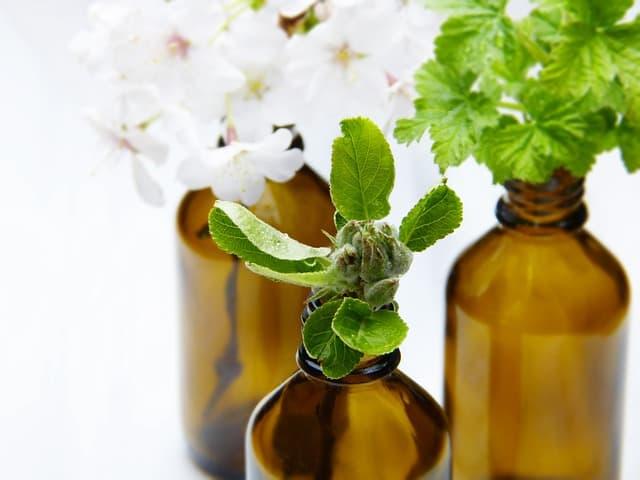 remèdes médicinaux phytothérapie, soins pour personnes âgées