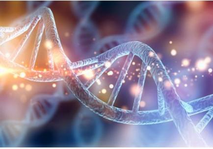 Blog Doctoome | Cancer : un traitement universel pour bientôt ?