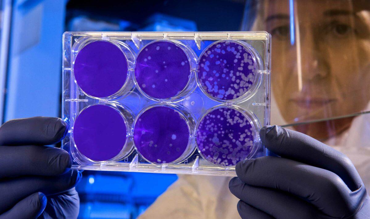 Blog Doctoome | Coronavirus en Chine : que sait-on de ce nouveau virus ?