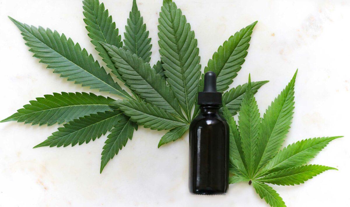 Blog Doctoome | Cannabis thérapeutique : Son expérimentation en France
