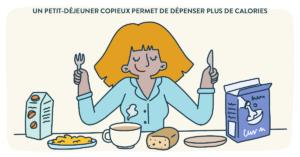 Blog Doctoome - Un petit-déjeuner copieux permet de dépenser plus de calories