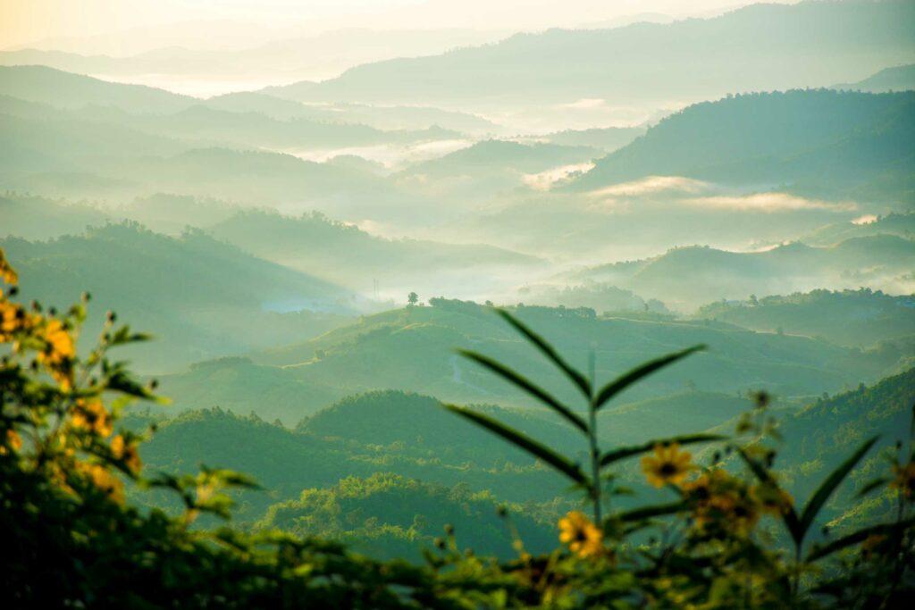 Blog Doctoome | Santé : Réduire son anxiété face au coronavirus - zen-sophrologie-destressant-nature-montagne-vert
