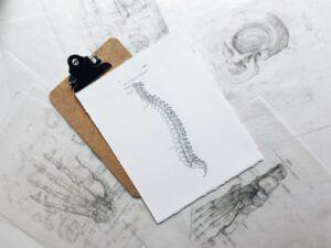 Colonne-vertebrale-chiropracteur-lumbago