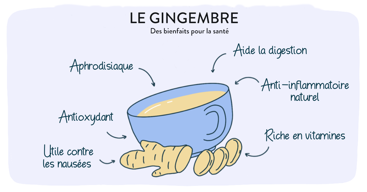 Bienfaits-Gingembre-Naturopathe-Nathalie-Fosse-Doctoome