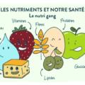 nutriments-blog-dieteticien