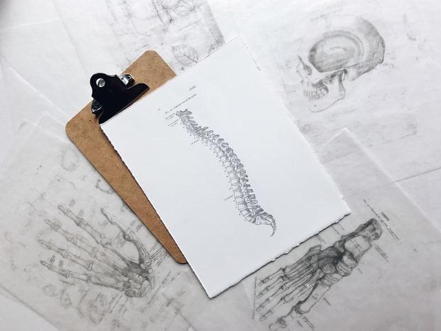 douleurs lombaires - colonne vertébrale