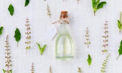 médecine douce : les bienfaits phytothérapie