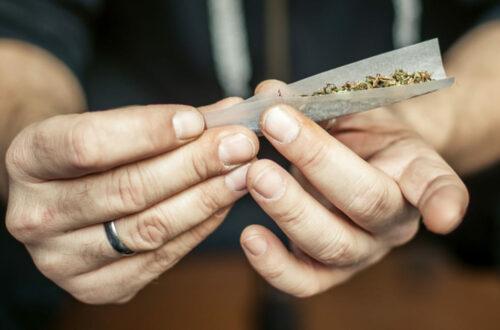 Cannabis : Un véritable fléau chez les jeunes