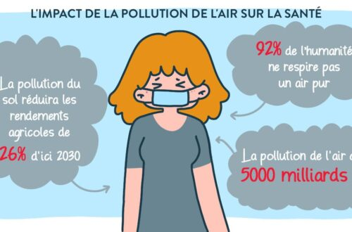 pollution air : quel comportement adopter ?