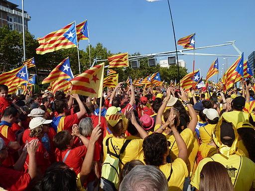 Imatge de la Via Catalana de 2014. FOTO: Clara Polo