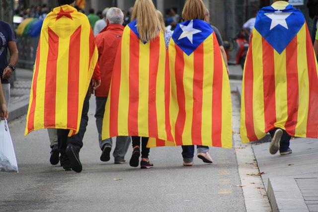 Banderes estelades a la Via Catalana de 2013 / NÚRIA