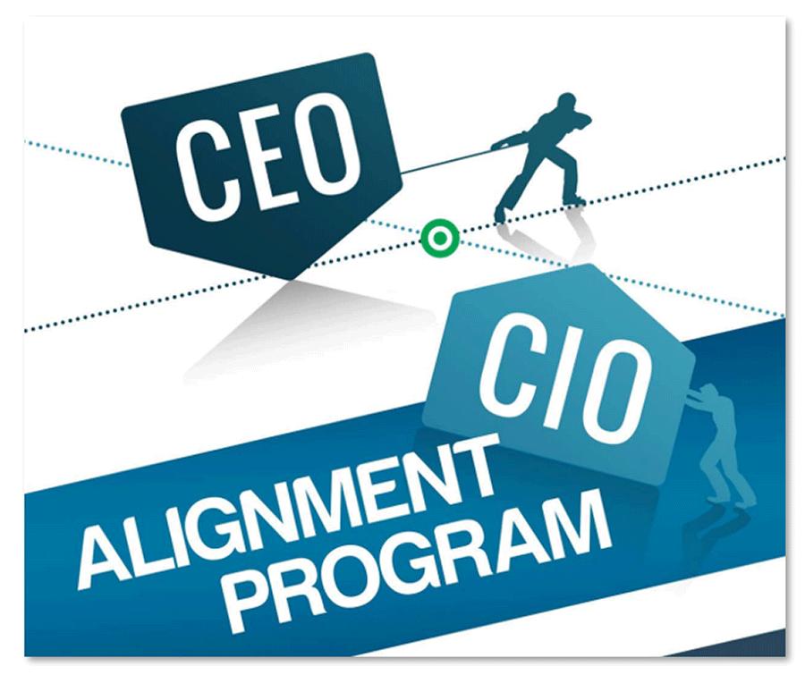 Screenshot of CEO-CIO Alignment Program