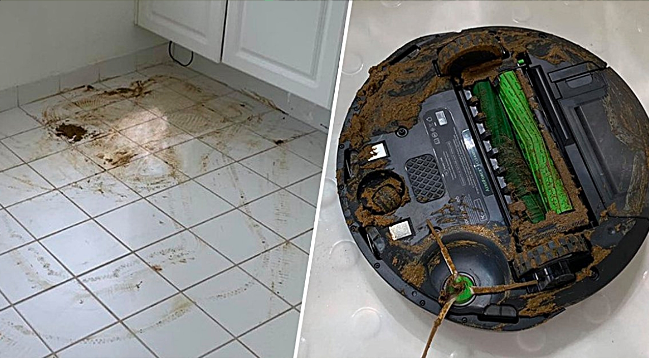 Robot Vacuum Runs Over Dog Doo And Smears It Everywhere   County