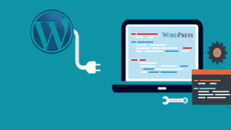 Best WordPress Database plugins