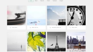 How to show your portfolio in WordPress?