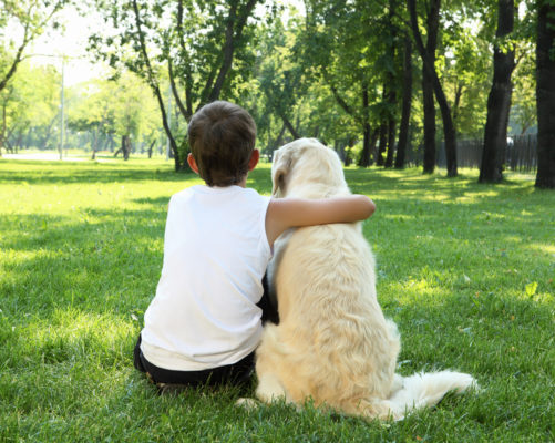 Values beliefs ethics boy and dog