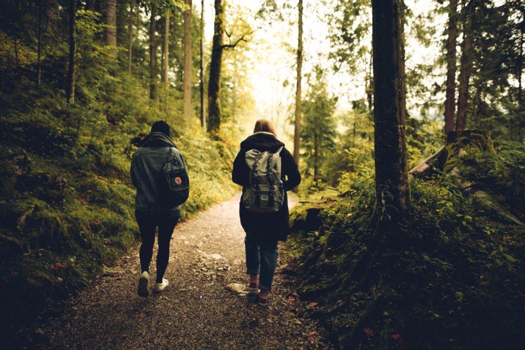 To mennesker går tur på en sti i skogen.