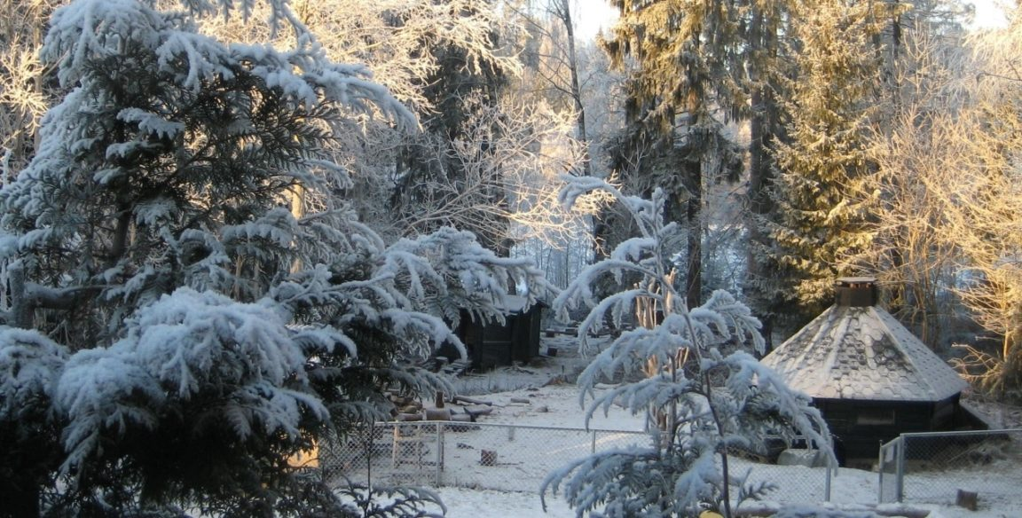 Hakkebakkeskogen Trollstua barnehage