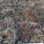 Peak District rainfall monitoring Tinytag Re-Ed data loggers