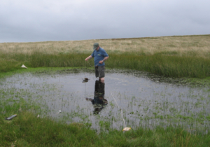 Tinytag data loggers record temperature in freshwater ponds