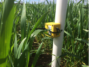 Tinytag TGP-4017 data logger Australian grain frost research