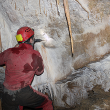 Tinytags monitor caves in Romania