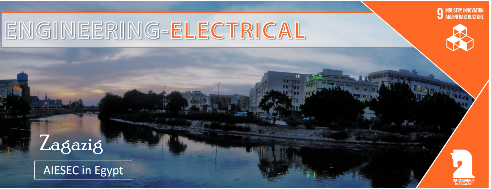 Electrical Engineering Opportunity in Egypt #9