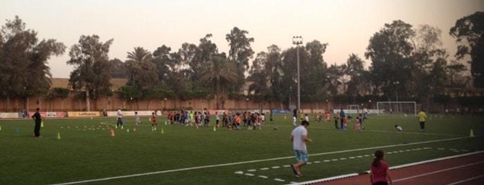 Sports Teaching Egypt - Quality Education