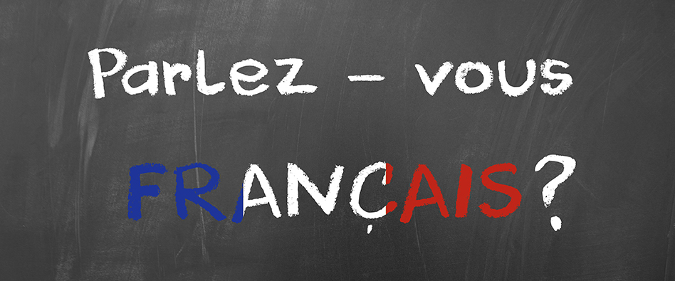 Teaching French in Egypt! - Quality Education