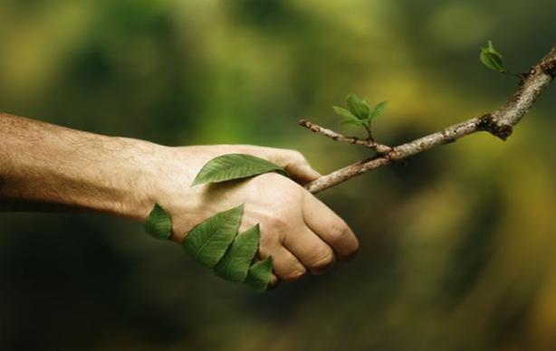 Join The Green Side - Environmental awareness- SDG15